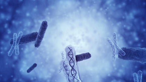 Conceptual animation of a telomere Animation