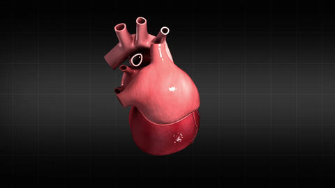 Visualization of a pulsating heart against a black grid background Animation
