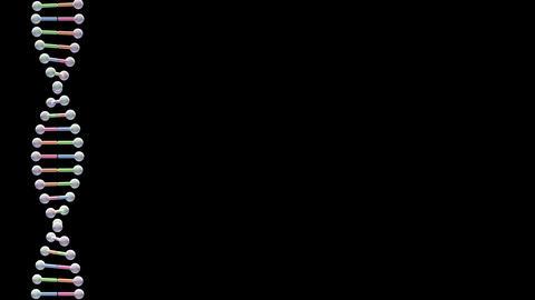 DNA Strand Genome image 3 Element B2 4k Animation