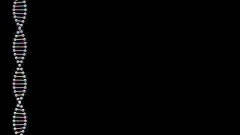 DNA Strand Genome image 3 Element B3 4k CG動画