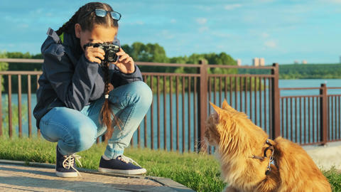 Girl photographer taking a picture of his pet, a beautiful cat Footage