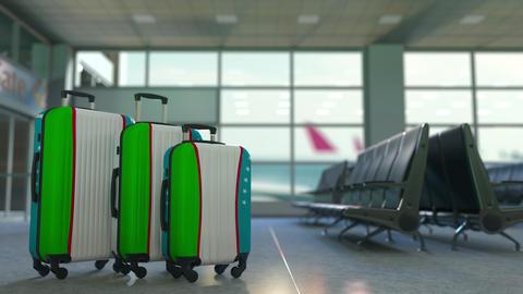 Travel suitcases with flag of Uzbekistan. Uzbek tourism conceptual 3D animation Live Action