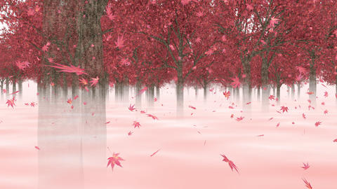 Going through the maple forest _ loop CG動画