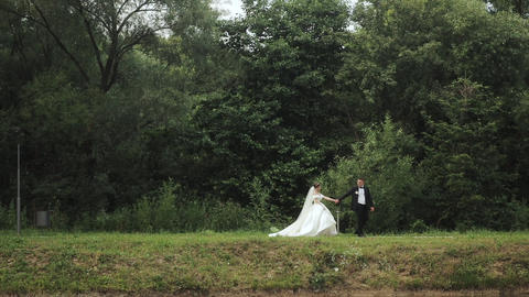Couple in wedding dress walks through the woods. Couple walks between the trees Live Action