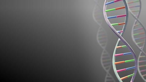 DNA Strand Genome image 3 A2 A1 4k Animation