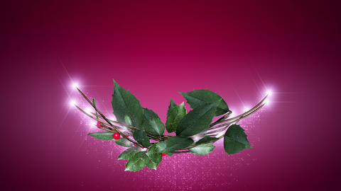 christmas wreath 2 _ magenta background Animation
