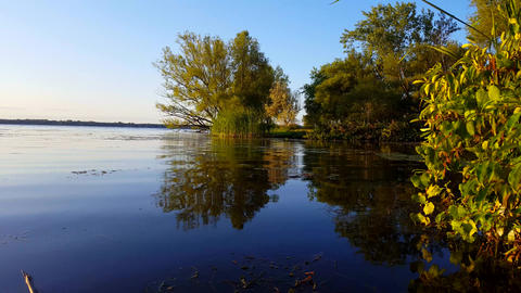 Beautiful View of Calm Pond and Lake Water in Summer. Tranquil Pond Scenery and Lakeside Shore Footage