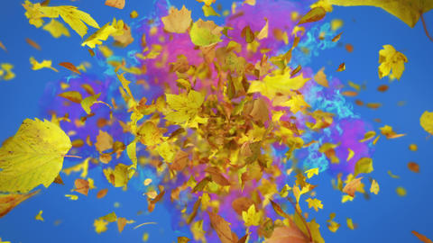 Exploding autumn leafs background Animation