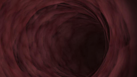 Interior visualization of blood vessels Stock Video Footage