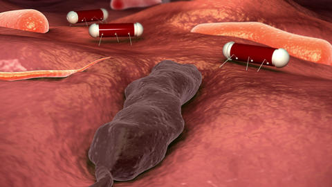 Nanobots attacking cholera virus Animation