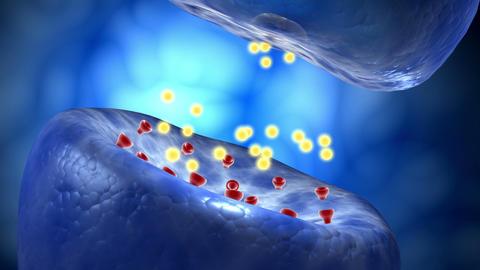 A neuron releasing neurotransmitter molecules, Stock Animation