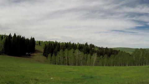 Mountain meadow Stock Video Footage