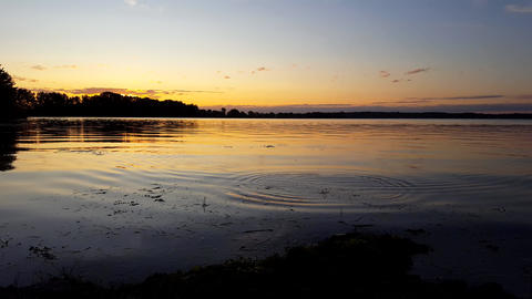 Fishing With Sunrise or Sunset View of Calm Lake in Summer. Reeling in Fish While Breaking Surface Live Action