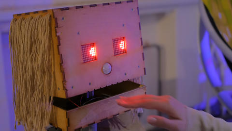 Folk handmade robot predicts woman future Footage