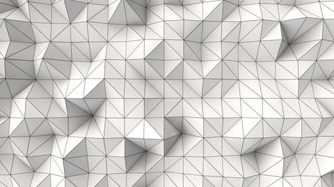 0986 White low poly displaced surface with black lines Animation