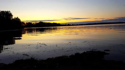 Beautiful Sunrise or Sunset View of Calm Lake in Summer. Fish Breaking Surface of Water Live Action