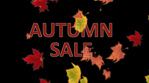 Autumn sale banner against falling leaves on blurred background Animation