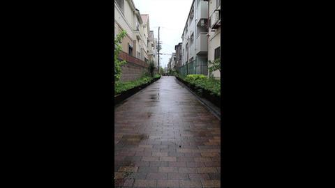 rainy day road Footage