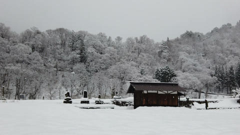Winter countryside with falling snow, old cabin and tree on mountain Live Action