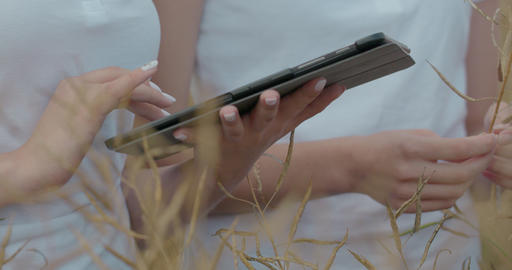 Scientists working in field with agriculture technology. Close up of woman hand Footage
