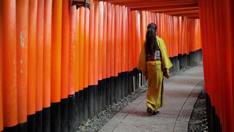 Elegant Japanese woman in Kyoto Japan Footage