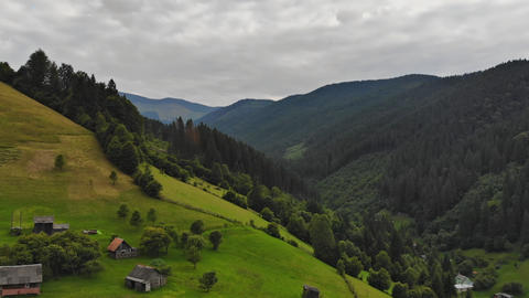 Aerial View Green Grass Summer Mountain In Mountains. View of Carpathians Live Action