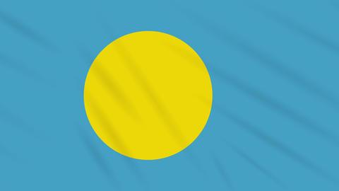 Palau flag waving cloth background, loop Animation