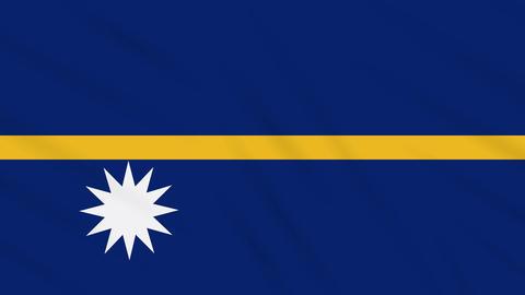 Nauru flag waving cloth background, loop Animation