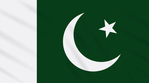 Pakistan flag waving cloth background, loop Animation