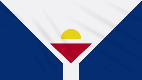 Saint Martin flag waving cloth background, loop Animation