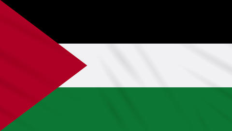 Palestine flag waving cloth background, loop Animation