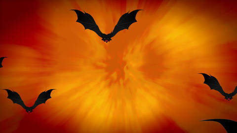 Halloween Spooky Animation with Flying Bats on orange gradient background Animation