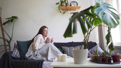 Scandinavian lifestyle - young beautiful woman resting on a couch, drinking Footage
