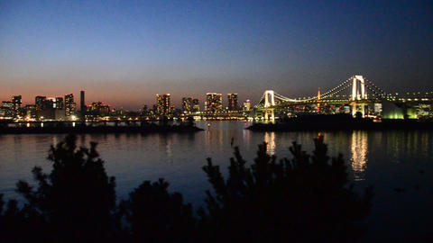 view of tokyo in the evening (from odaiba) Footage