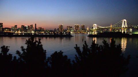 turn around tokyo bay in the evening Footage