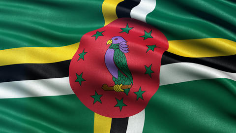 Dominica flag seamless loop Animation