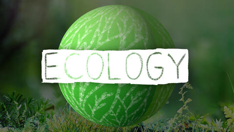 animation logo with ecology writing with ecology theme background Live Action