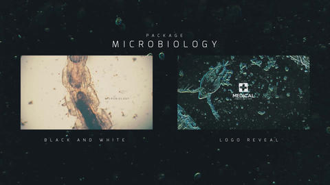 Microbiology Package After Effects Template