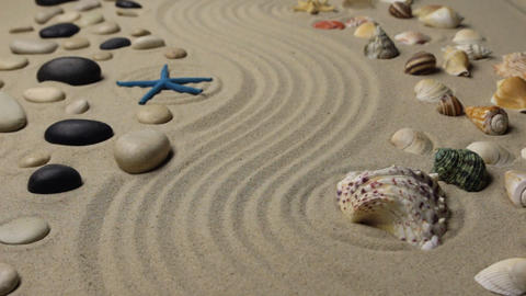 Refocusing the focus from the seashell to the starfish. Texture of sand Live Action