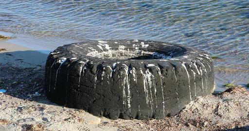 Abandoned Used Truck Tire On Coastline GIF