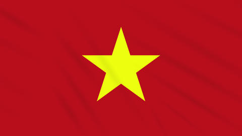Vietnam flag waving cloth, background loop Animation