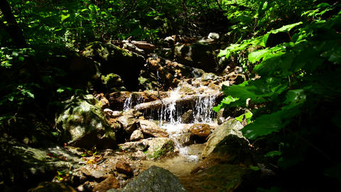 Mountain river with a small waterfall. Environmentally friendly nature Live Action