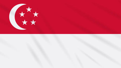 Singapore flag waving cloth, background loop Animation