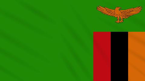 Zambia flag waving cloth, background loop Animation