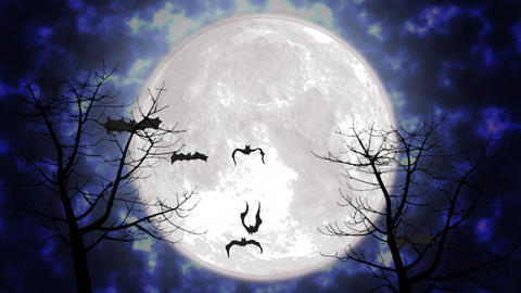 Halloween themed background with flying animated bats and scary trees Animation