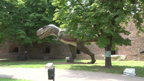 Realistic Tyrannosaurus rex dinosaur in dino park Hiding behind the tree Live Action
