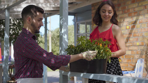 Young smiling bearded farmer discussing flowers with attractive young woman Live Action