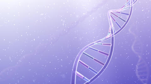 DNA Strand Genome image 4 A4b 4k Animation