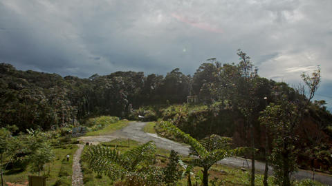 Hilly Landscape with Forest Valley Roads Building Roof Footage
