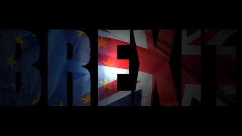 EU Referendum Brexit Live Action